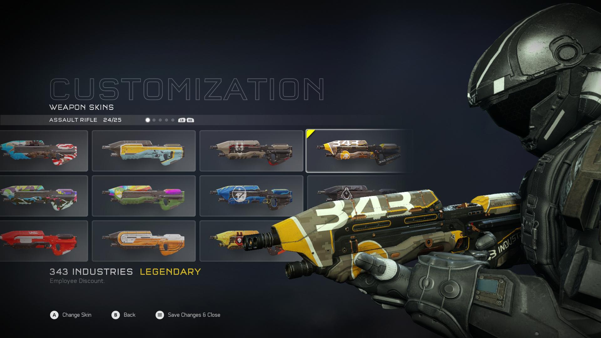 343 AR custom