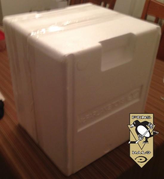 McF Halo 4 Master Chief Statue foam containter-