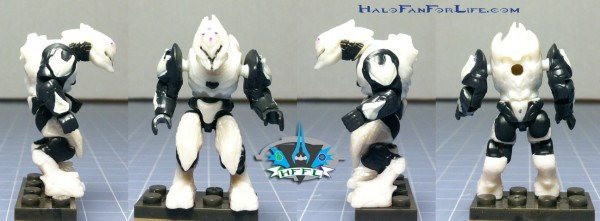 Rapid Attack Ghost Elite ortho