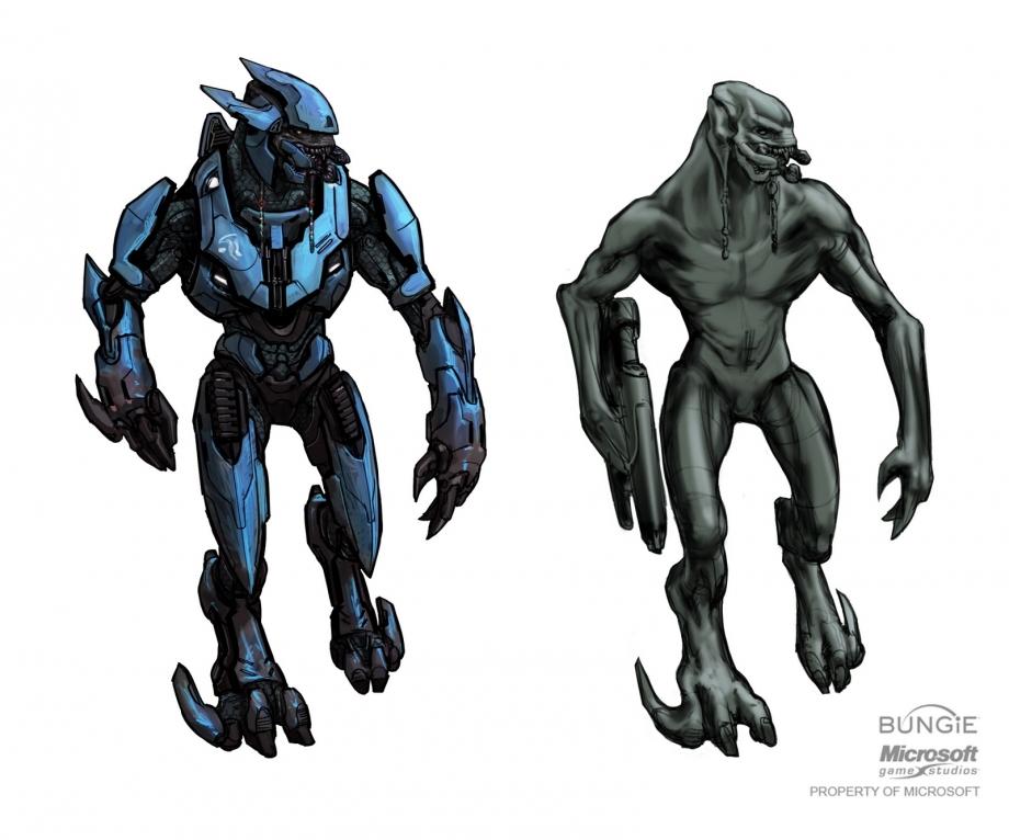 Funky Halo Elite Anatomy Gift - Anatomy Ideas - yunoki.info